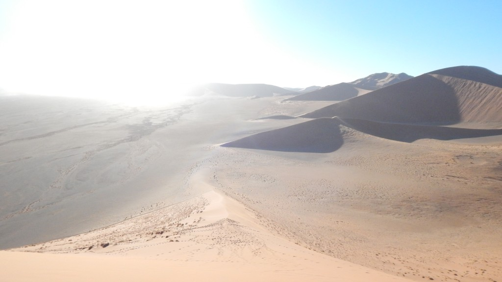 View from atop Dune 45