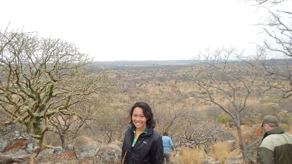 At the top of a hill searching the landscape for rhinos